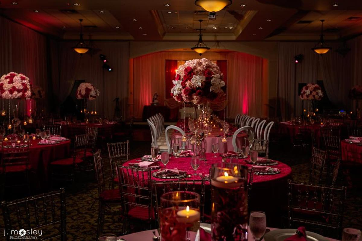 Reception with rented chairs, uplighting, and full ballroom draping.
